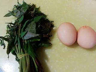 春季养肝,香椿芽鸡蛋饼,准备好香椿芽和鸡蛋