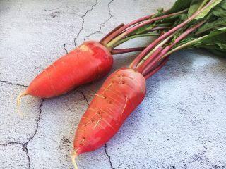 肉末黄豆烧水萝卜,准备好新鲜的水萝卜。