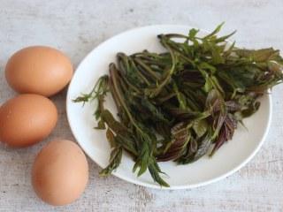 香椿炒鸡蛋,准备食材。
