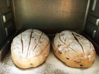 全麦核桃咖啡软欧包(液种发酵法),烤箱提前预热200度,上下火200度中层烤25~25分钟,至表面均匀上色