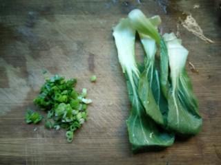 热气腾腾的阳春面,香葱切碎,青菜洗净。