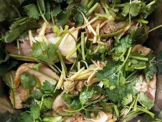 花雕酒焗藤椒手撕鸡,腌制半小时。