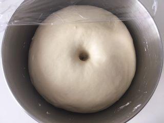 土豆奶酪面包,发酵好的面团,手指沾点干粉按下去,有个圆圆的洞,不回弹或者轻微回弹即可