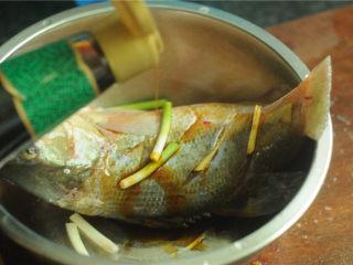 葱香鲈鱼,淋上少许蒸鱼豉油