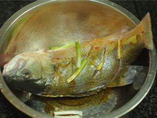 葱香鲈鱼,放入盆里腌制十分钟左右
