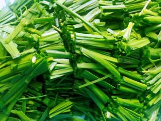 春韭炒百叶,韭菜洗干净切寸断备用