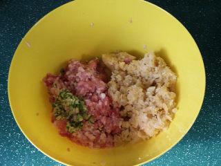 酸菜猪肉饺子,用双手握起酸菜轻轻攥一下、挤去水分放入肉馅中、再放点葱姜沫
