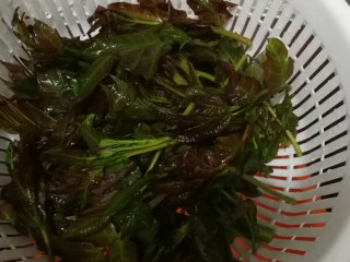 香椿蔬菜蛋皮卷,清洗后去掉老根。