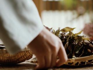 【谷雨·香椿鱼儿】谷雨落时,一口香椿一口茶,香椿芽去根,处理成均匀的小棵;