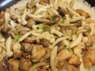 菌菇滑鸡煲仔饭,大米淘洗干净泡30分钟,按照大米和水的比例是1:1.5的比例放入土锅,中火10分钟,然后放入炒好的蘑菇和鸡肉,再转小火10分钟,之后闷5分钟即可!