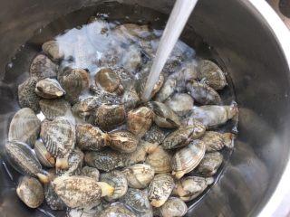 蒜香花甲,花蛤用水清洗