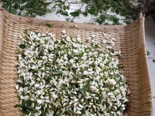 香煎槐花牛肉馄饨,市场买来新鲜槐花15斤摘去老叶硬枝。 ~大工程