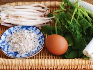 菠菜白玉菇虾皮汤,首先把食材先准备一下,猪肉从冰箱拿出来放盆里解冻,忘记拍照了,嘻嘻,买菠菜要选这种红根的,比白根的营养更丰富,山东大葱去皮洗净、准备好淡干虾皮