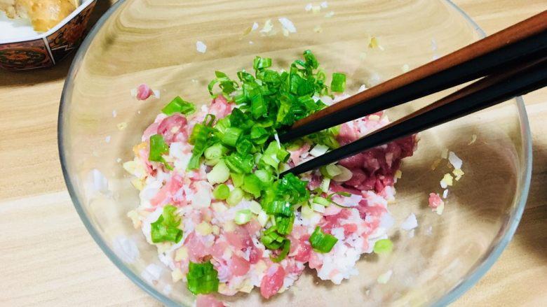 创意菜-万物复苏之春天的味道,所有食材切碎放入肉馅