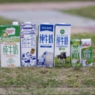 為了驗證6家進口牛奶哪家更強?我默默的做了一輪實驗...