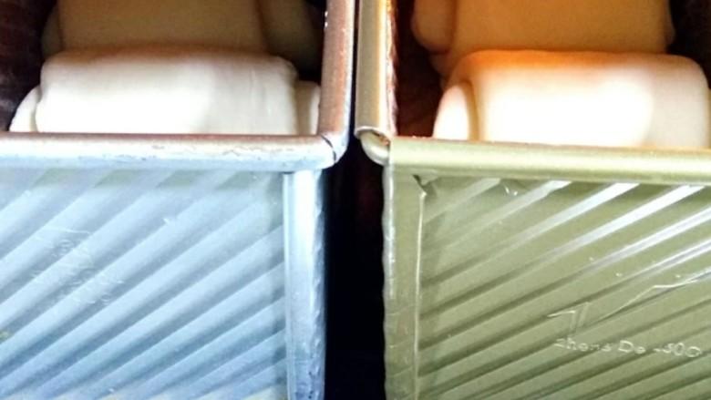 中种北海道吐司,放入吐司盒