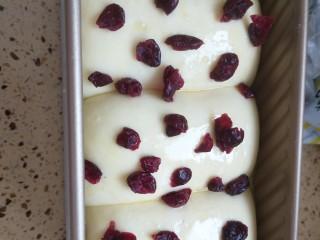 酸奶蔓越莓土司,撒上蔓越莓干