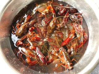 蒜泥小龙虾,小龙虾洗净,加入一勺盐,用清水浸泡一个小时