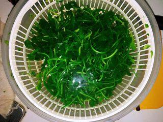 上海小吃-干挑鸡丝荠菜大馄饨- 两种包法,然后放在凉水里面泡一下