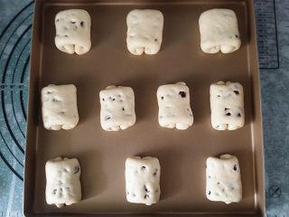 蔓越莓牛奶卷#无黄油版#,依次卷好10个面包卷放入烤盘中