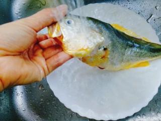 清蒸黄花鱼,用流动水冲洗干净