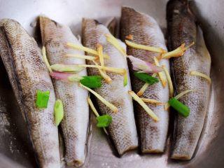 鲜美无比的清蒸南极冰鱼,加入适量的葱姜丝进行腌制半个小时左右