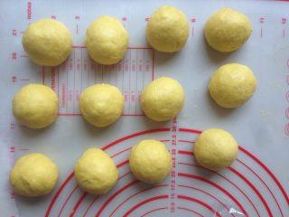 芒果面包卷,发酵好的面团轻压排气,分成12等份,滚圆,盖上保鲜膜松弛15分钟。