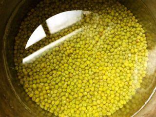 清热解毒海带薏仁绿豆糖水,绿豆淘洗干净后加水泡发一个小时