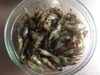 醉虾 —— 夏日极品 鲜美无比,把洗干净的河虾沥干水,倒入容器中