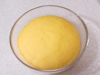 花样面点之【南瓜蝴蝶花卷】,发酵2.5倍大小,用手指戳一个洞不回缩