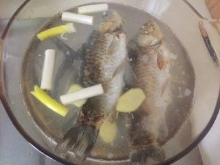 鲫鱼萝卜汤,姜葱放入。