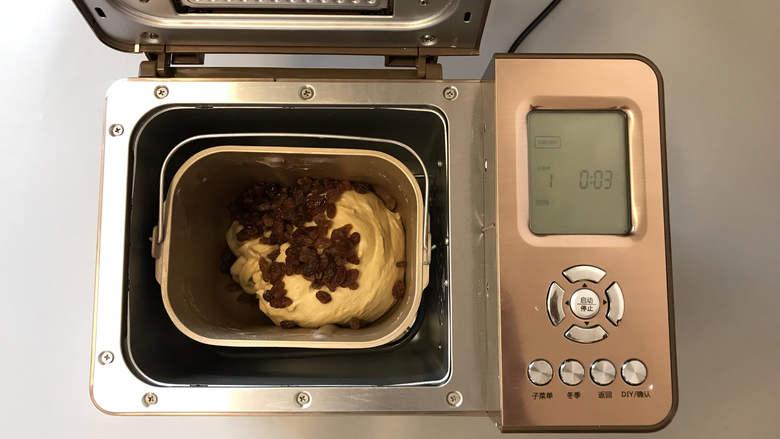 面包机版咕咕霍夫面包,并将准备好的酒渍葡萄干放入,继续和面至结束。
