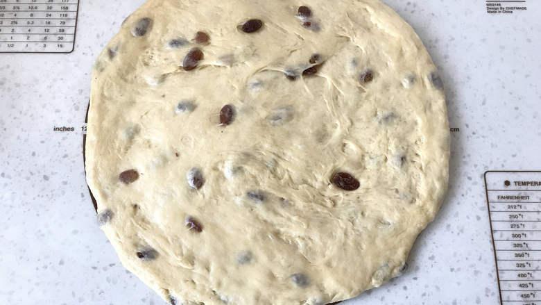 面包机版咕咕霍夫面包,将面团擀成圆形。