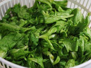 蒸菜篇:电饭锅版香菇盏,茼蒿菜盐水浸泡20分钟