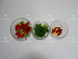 干锅水萝卜,尖椒、红椒切成小块,姜去皮切片,干辣椒切小段,香葱切长段