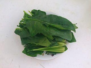 杂蔬火腿羊汤,把菠菜清洗干净,从中间切开