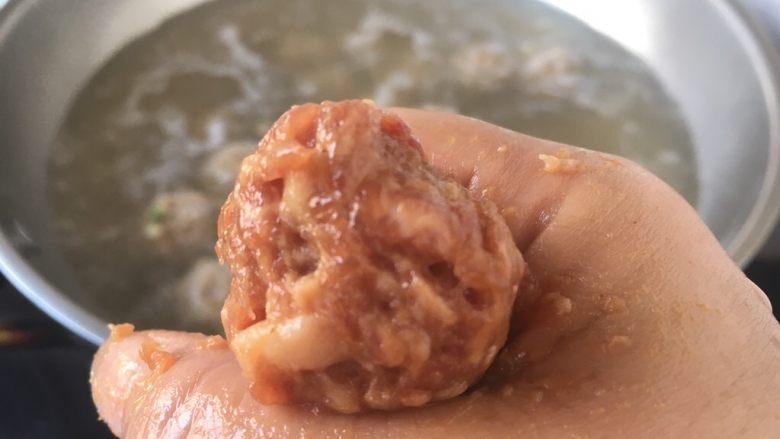 丝瓜丸子汤,起锅,锅里放适量的水,水底有小气泡时即可下丸子,下丸子时把火调到中火,火不能大,水不能开起来。把适量的肉馅放在手里,用大拇指将肉馅抹匀,从虎口挤出一个肉丸,用小勺送入汤中,或者用小勺从肉馅的边缘用舀起,用小勺塑成肉圆的形状,放入汤中。