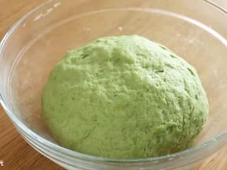 12m+菠菜奶香馒头,和成光滑的面团,发酵成2倍左右大小。
