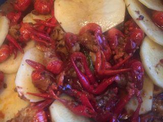 麻辣小龙虾,放入土豆,继续小火煮至没有啤酒味,剩有一点水就可以盛到盘子里啦!