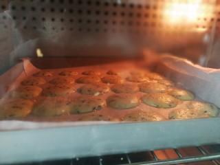 黑芝麻薄脆饼,烘烤中的饼干