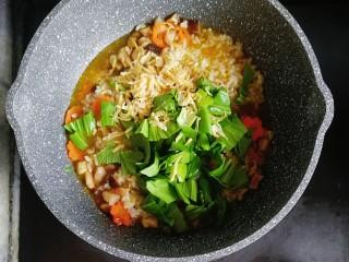 寶寶輔食—雜蔬蝦皮豬肉燴飯,煮至湯汁收了一半,倒入青菜和蝦皮
