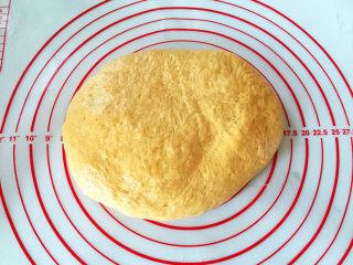 全麦南瓜面包,将发酵好的面团取出按揉几下,排除气体。
