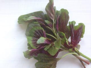 少女粉豌豆凉粉,苋菜摘洗干净取叶子部分,大约用了100克。