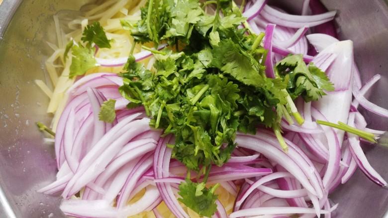 洋葱拌土豆丝,然后把土豆丝洋葱丝还有香菜放在一个盆里。