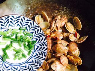 下酒菜+蚝油炒花甲,放入葱花
