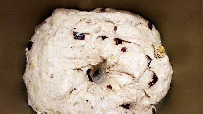面包机版无糖低脂全麦面包,发酵至2.5倍大,手指插入面团不回缩不塌陷