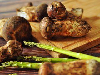 黄油煎松茸,这些松茸来自香格里拉的山间,具有独特浓郁香味;