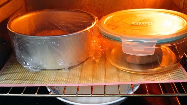 芝麻核桃黑麦包,两个剂子分别放入模具,烤箱发酵档,底部放一碗热水,发酵60分钟,天气热可能40分钟就完成。