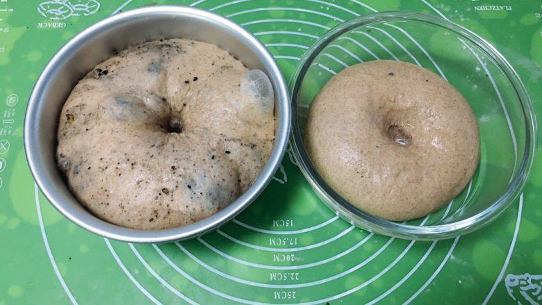 芝麻核桃黑麦包,检查面团是否发酵成功,用手指戳一下不反弹,就证明发酵成功。