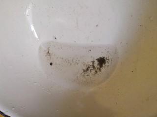 丝瓜花蛤汤,盆的下面也有很多吐出来的泥沙。